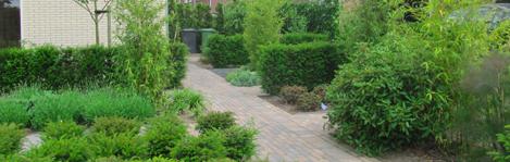 totaalondehoud schoffelen snoeien hagen knippen tuin bladvrij maken